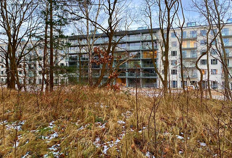 Haus-Hiddensee-Seeseite